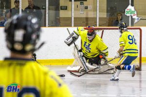 image of healthy scratches ball hockey